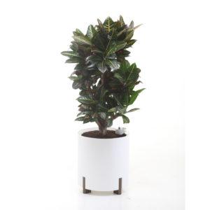 Kastmissüsteemiga taimepott valge ümar
