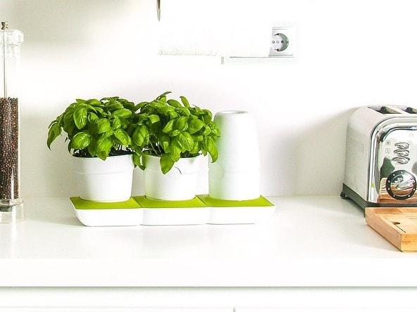 Kastmissüsteemiga lillepott Basic S rohelise alusega