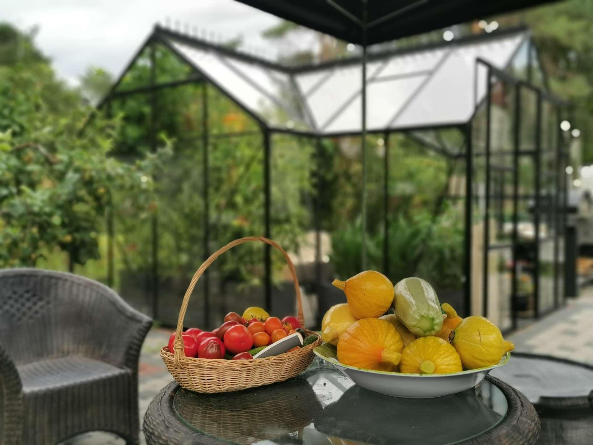Kasvuhoone Vitavia Sirius beebikõrvitsad ja tomatid