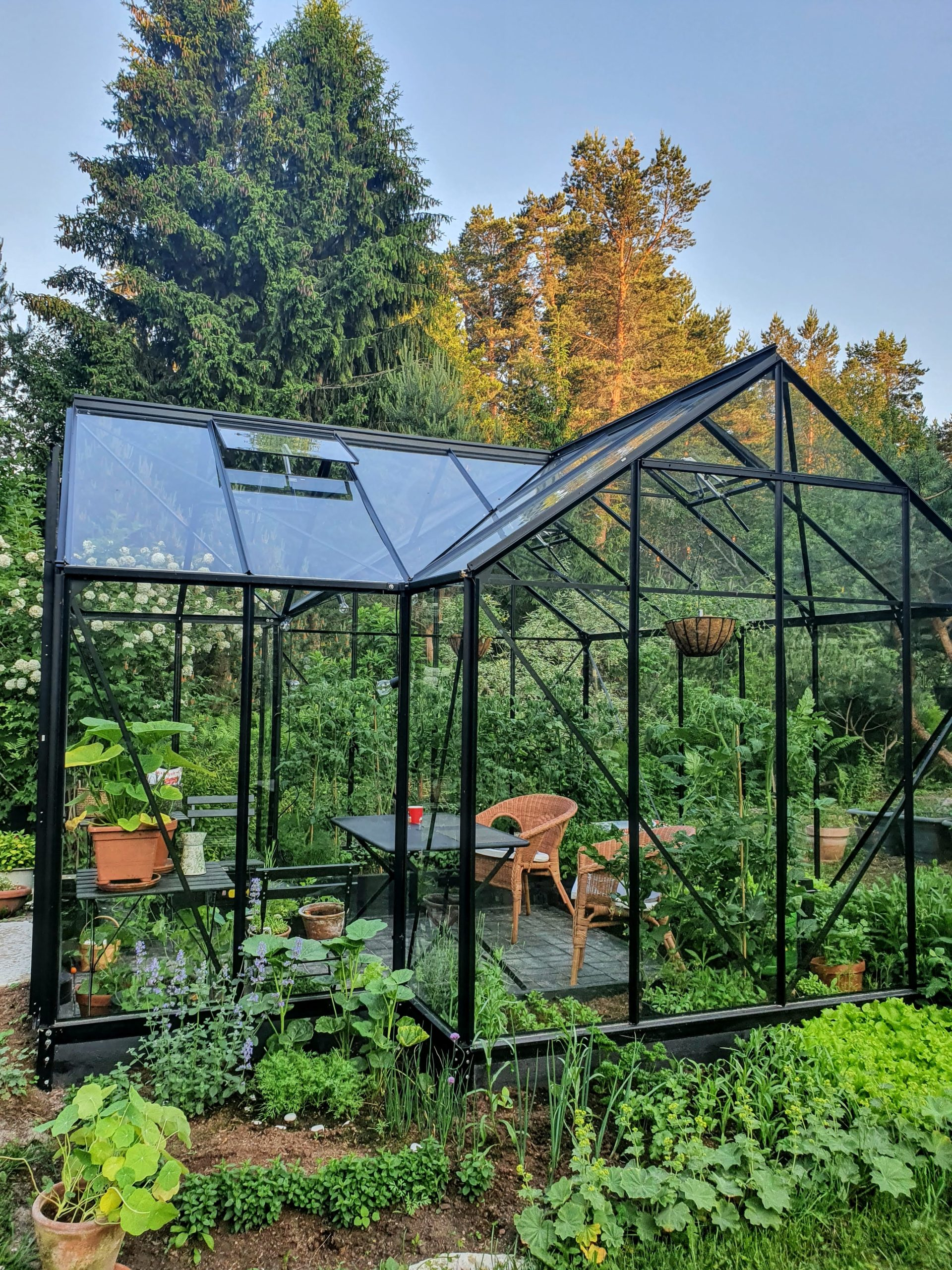 Kasvuhoone Vitavia Sirius nii taimedel kui olemiseks