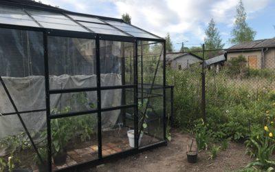 Minu aia esimene kasvuhoone